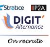 Stratice et IP2A recrutent pour Digit'Alternance